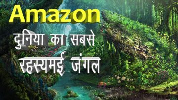 Facts about amazon jungle in Hindi | Largest jungle in the world | Amazon Rainforest<div class='yasr-stars-title yasr-rater-stars-visitor-votes'                                           id='yasr-visitor-votes-readonly-rater-960b79ad7b88a'                                           data-rating='0'                                           data-rater-starsize='16'                                           data-rater-postid='6081'                                            data-rater-readonly='true'                                           data-readonly-attribute='true'                                           data-cpt='posts'                                       ></div><span class='yasr-stars-title-average'>0 (0)</span>
