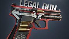TOP 10 Legal Self Defense Guns You Can Buy Online