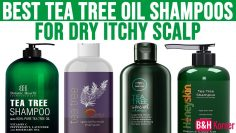 Top 7 Best Tea Tree Oil Shampoos for Dry Itchy Scalp – Best Hair Care Products 2020